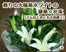 百合香りの大輪系ホワイト