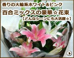 百合香りの大輪系ホワイト&ピンク