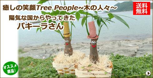 【送料無料】【ギフトラッピング無料】癒しの笑顔 Tree People〜木の人々〜★陽気な国からやってきた『パキーラさん』★