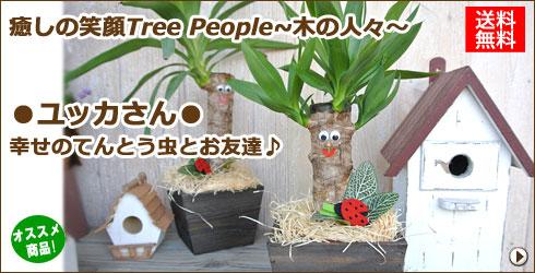 癒しの笑顔Tree People 〜木の人々〜 ユッカさん