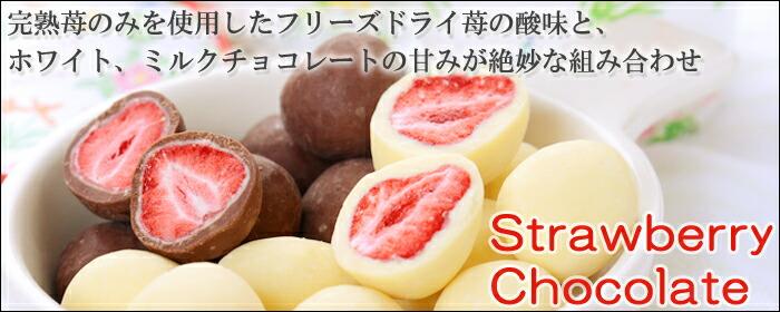 フリーズドライの美味しいイチゴチョコ