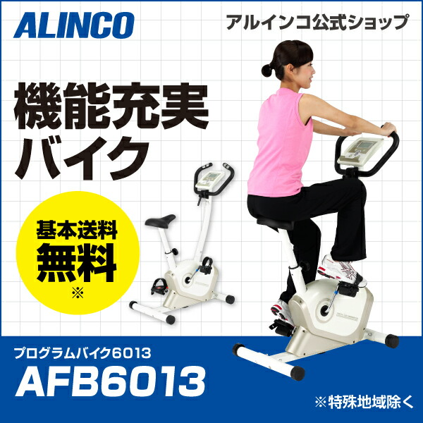 プログラムバイク6013/AFB6013