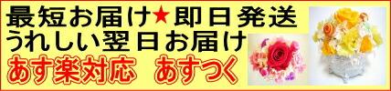 あす楽対応/即日発送/あすつく/翌日お届け商品