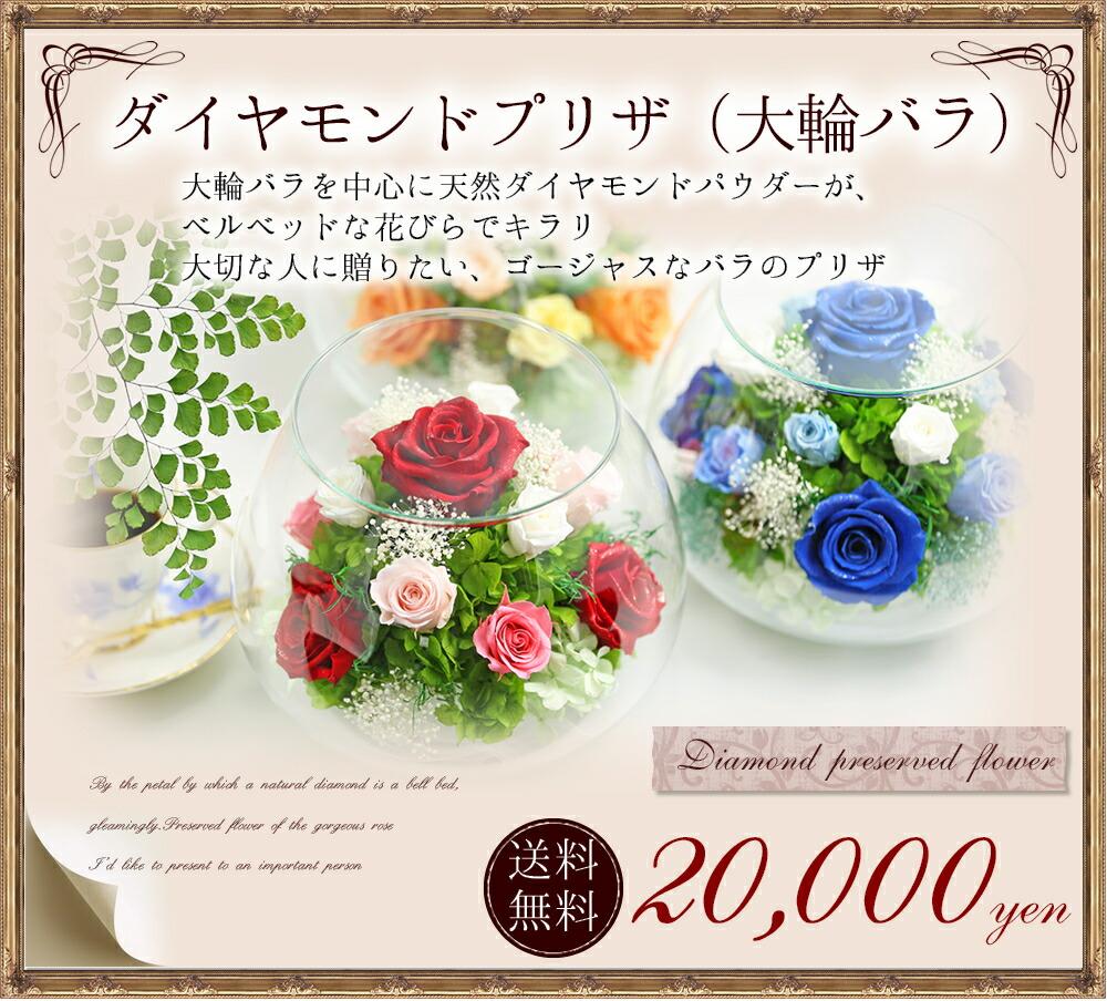 天然ダイヤモンドプリザ 送料無料20000円