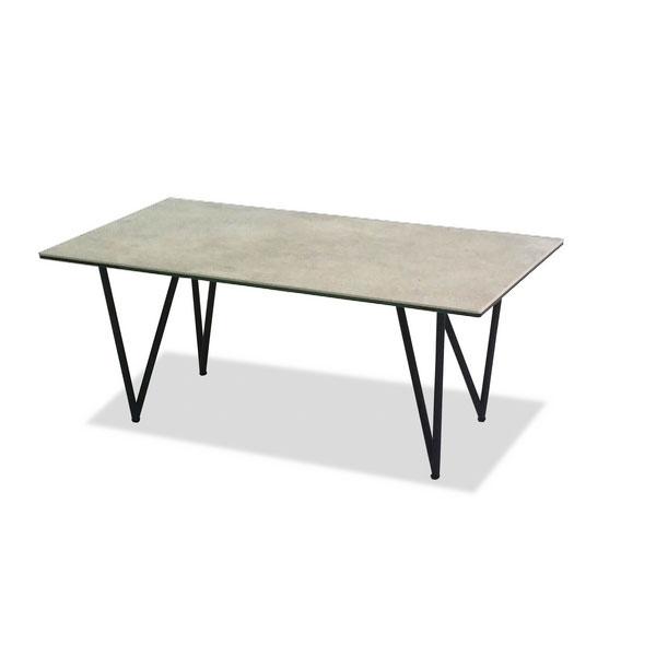 センターテーブル 100SRCT リビングテーブル 100cm幅 応接テーブル ローテーブル ソファーテーブル 長方形 ガラス ターニー NEWTON