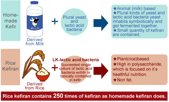 What is Rice Kefiran?