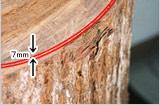 タヒボの厚木の切り口