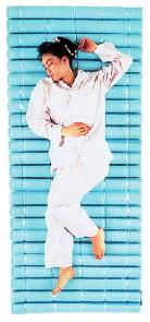 湿気の多い日本の風土に最適「ヘルスロール エクセル」