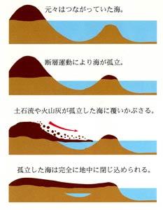 海綿状地層の形成プロセス