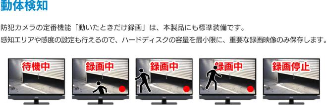 映像に動きがあった時だけ録画する動体検知機能搭載