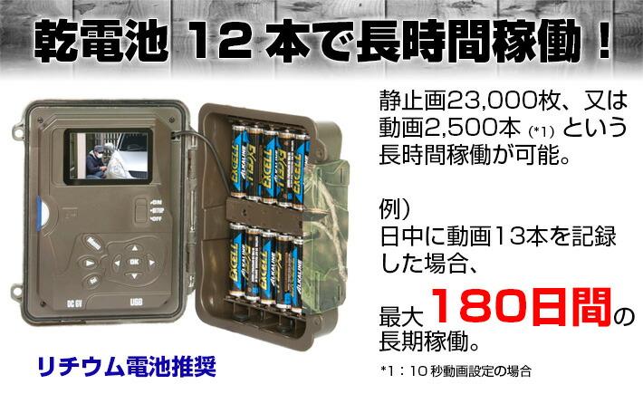電池12本