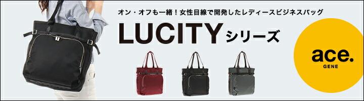 lucity