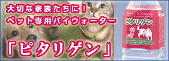 犬猫用パイウォーターペットボトル