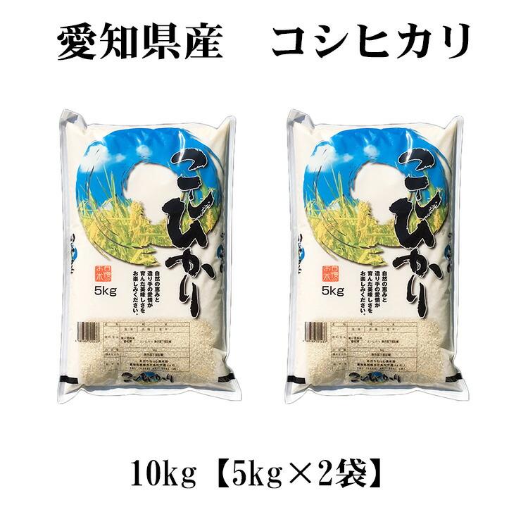 愛知米 こしひかり10kg