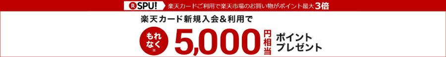 楽天カード新規入会&利用でもれなく5,000ポイントプレゼント!