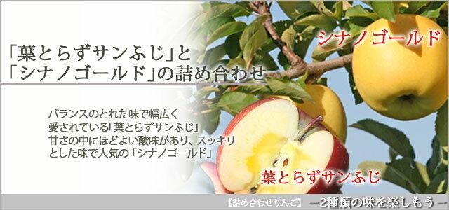 葉とらずサンふじ・シナノゴールド