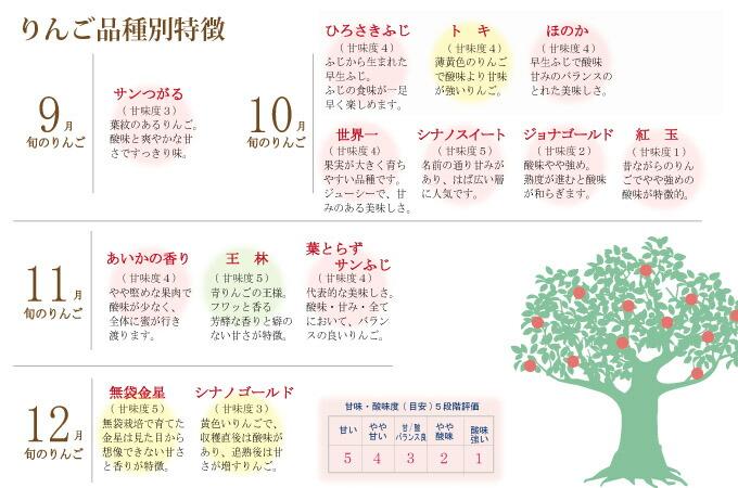 りんごの特徴