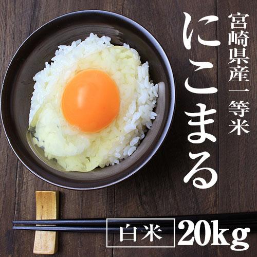 宮崎県産|にこまる20kg