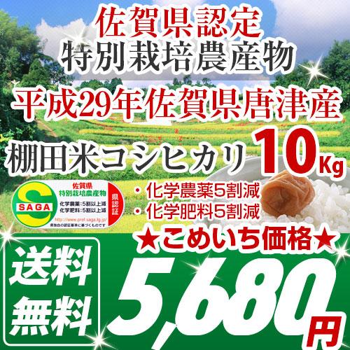 佐賀県産棚田米コシヒカリ|食味ランキング特A受賞|減農薬特別栽培農産物