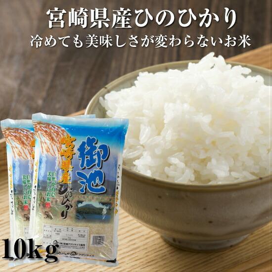 ひのひかり宮崎県産10kg送料無料
