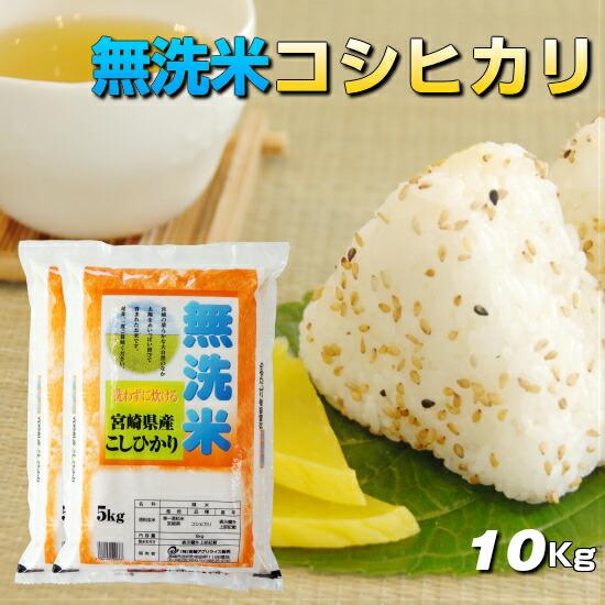 無洗米こしひかり宮崎県産10kg送料無料