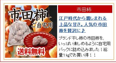 市田柿自宅用 送料無料