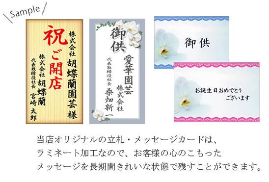 胡蝶蘭 立札・メッセージカード