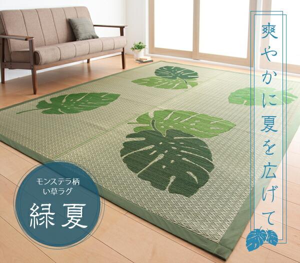 モダン い草 ラグ 幅191cm × 191cm 絨毯 天然エアコン 浄化作用 - エイムキューブ画像1