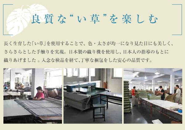 モダン い草 ラグ 幅191cm × 191cm 絨毯 天然エアコン 浄化作用 - エイムキューブ画像7