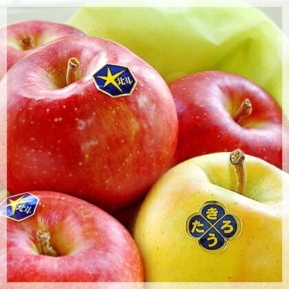 幻のりんご!的場りんご園の北斗・きたろう