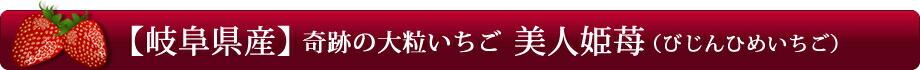 【岐阜県産】奇跡の大粒いちご「美人姫苺(びじんひめいちご)」