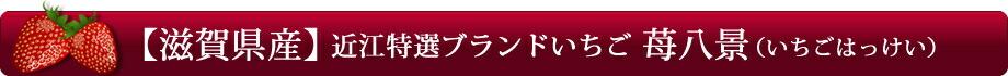 【滋賀県産】近江特産ブランドいちご「苺八景(いちごはっけい)」