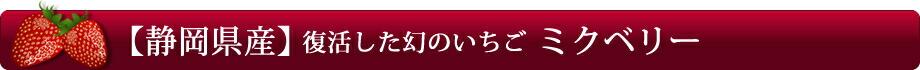 【静岡県産】復活した幻のいちご「ミクベリー」