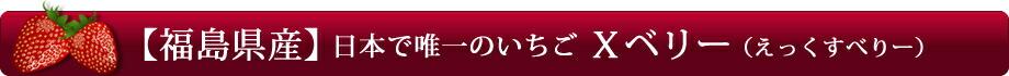 【福島県産】日本で唯一のいちご「Xベリー(えっくすべりー)」