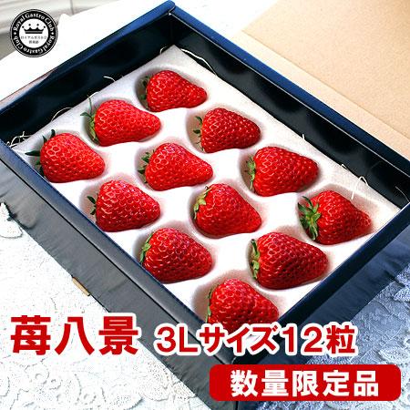 滋賀産「苺八景」(3Lサイズ/12粒入)