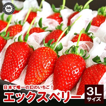 福島産「エックス(X)ベリー」(3Lサイズ/18粒入)