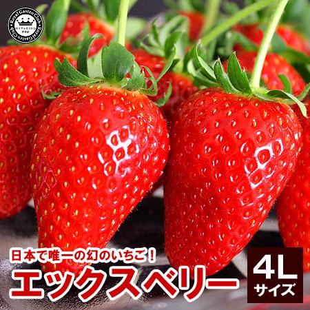 福島産「エックス(X)ベリー」(4Lサイズ/15粒入)