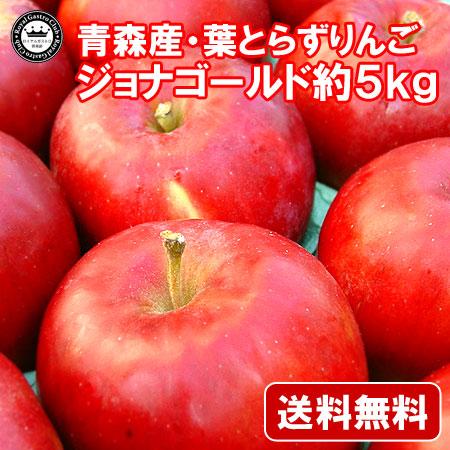 【ご家庭用】青森産りんご 葉取らずジョナゴールド