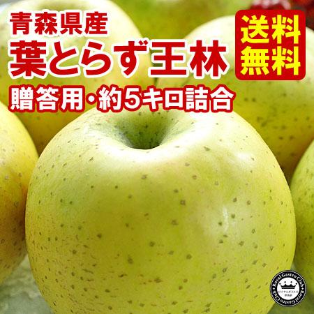 【贈答用】青森産りんご 葉取らず王林(約5kg/14〜20玉)