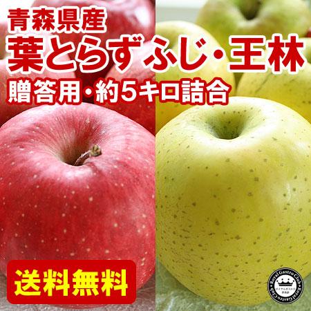 【贈答用】青森産りんご 葉取らずふじ・王林(約5kg/14〜20玉)