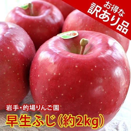 【訳あり品】的場りんご園の早生ふじ(約2kg/5〜6玉入)