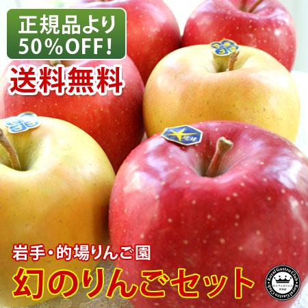 【訳あり品】的場りんご園の北斗・きたろう(約2kg/6個入)