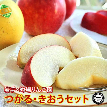 1%未満の希少りんご つがる・きおうセット 約2kg/5〜6玉入 岩手県的場りんご園 送料無料