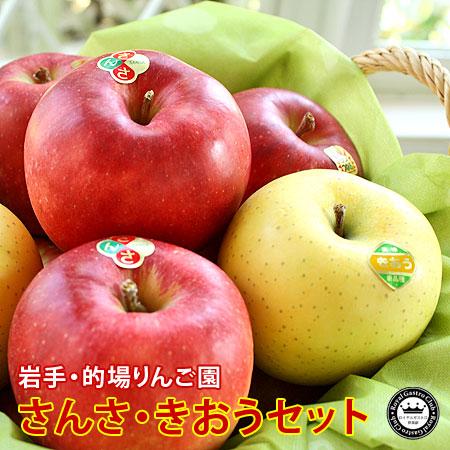1%未満の希少りんご さんさ・きおうセット 約2kg/5〜6玉入 岩手県的場りんご園 送料無料