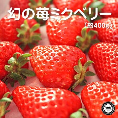 静岡産「ミクベリー」(400g/9〜15粒入)