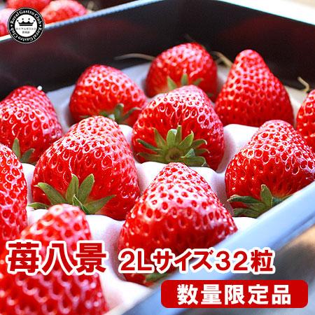 滋賀産「苺八景」(2Lサイズ/32粒入)