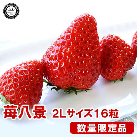 滋賀産「苺八景」(2Lサイズ/16粒入)