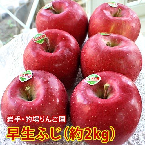 的場りんご園の早生ふじ(約2kg/5〜6玉入)