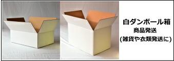 白ダンボール箱 白ダンボールケース