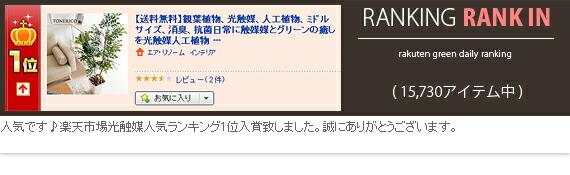 1302022a-4503rank-r.jpg